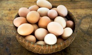 tukangfikircom-putting-all-your-eggs-in-a-basket